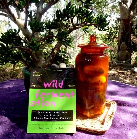 """Wild Fermentation; the Flavor, Nutrition, and Craft of Live Cultured Foods"" by Sandor Ellix Katz"